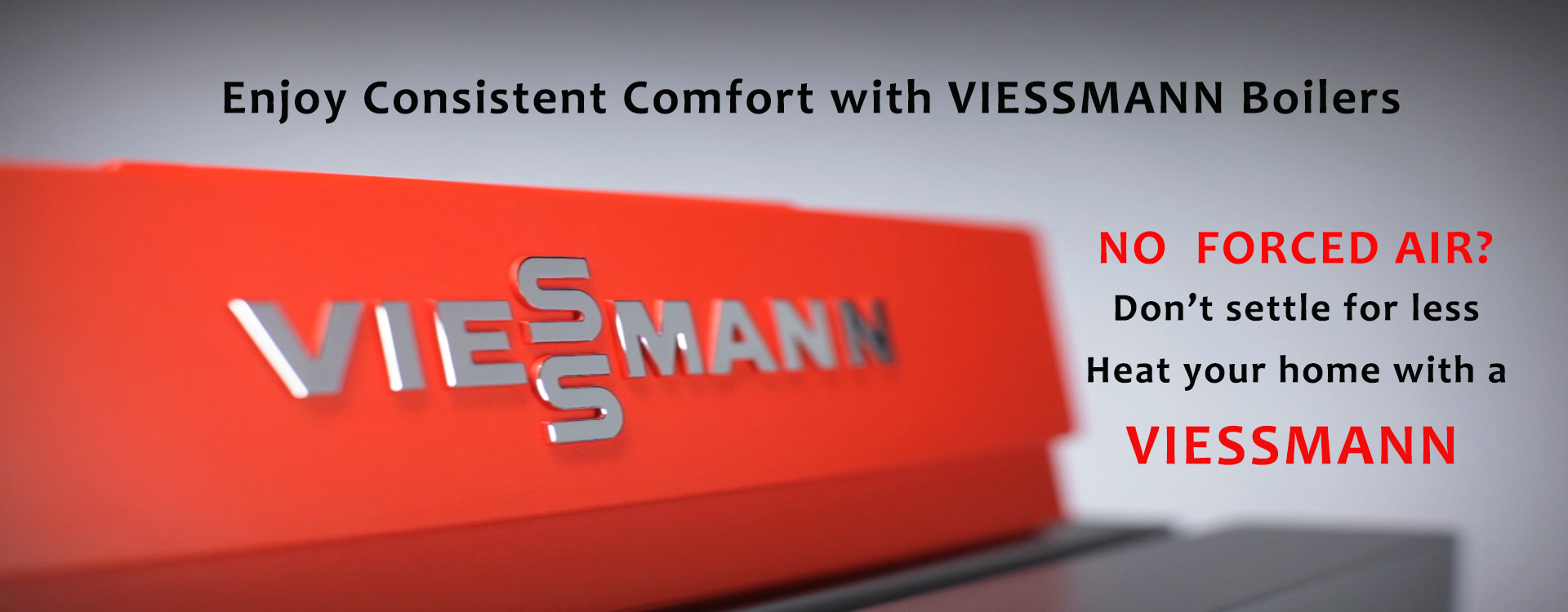 VIESSMANN  BIG